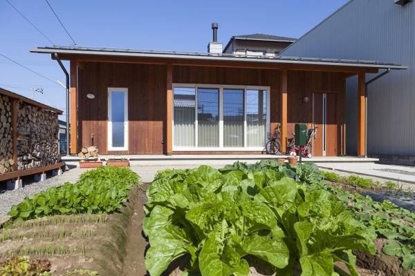 薪置き場と家庭菜園